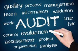 More Types Of Audits | SAX