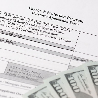 Paycheck Protection Program Borrower Application Form